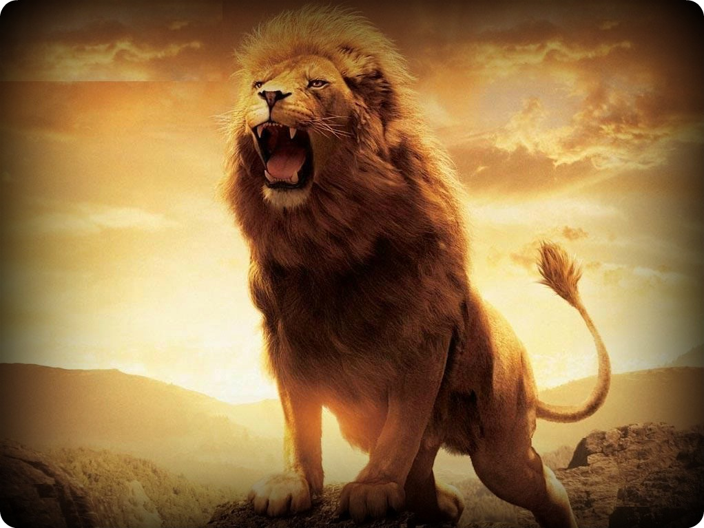 The Conquering Lion - Klarion Kall Conquering Lion Of Judah